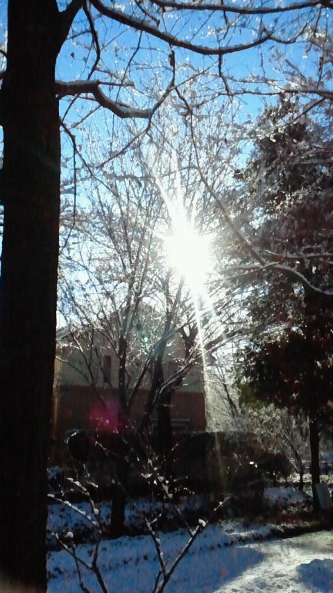 雪の翌日は