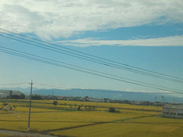 京都にいます