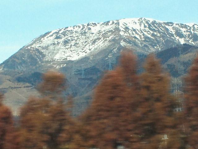 京都に帰ってきました